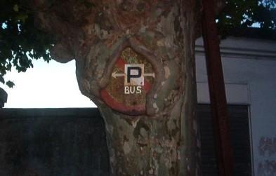 señal comida por árbol